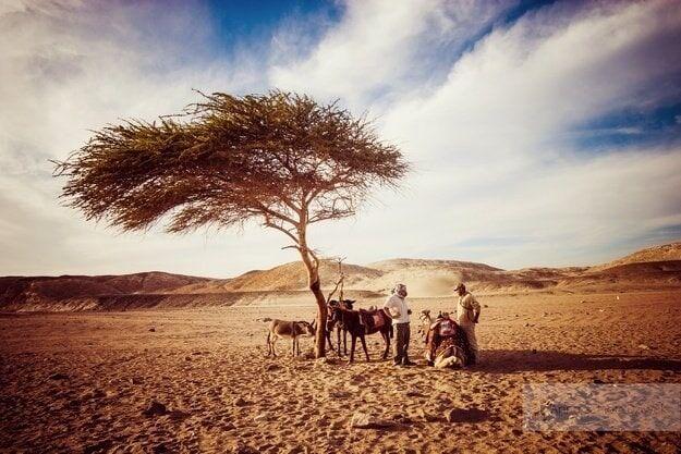 sesja-w-egipcie_028